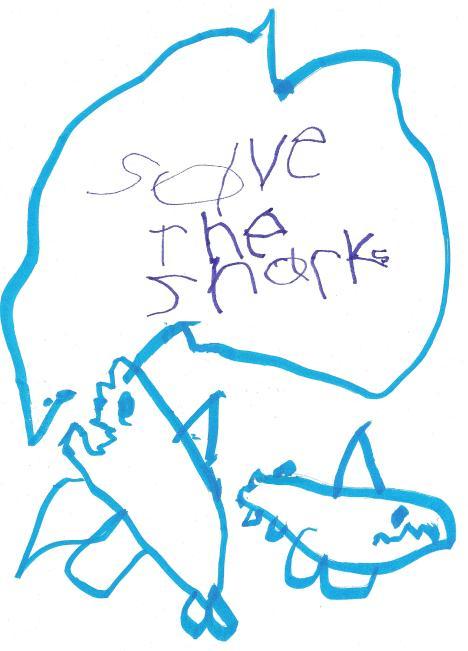 shark final